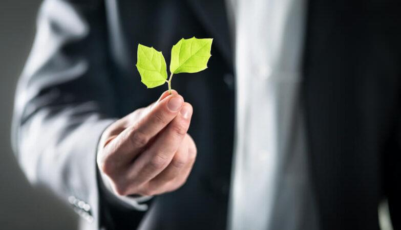 Stimuleringsregeling Duurzame Energietransitie